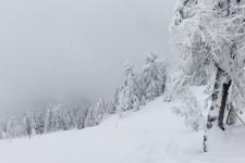 В Насфельде обычно очень много снега.