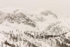 Насфельд. Долгожданный снег в январе 2012 г.